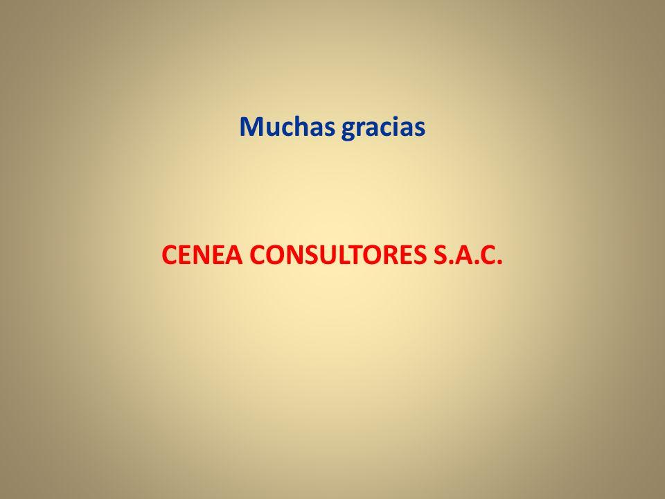 Muchas gracias CENEA CONSULTORES S.A.C.