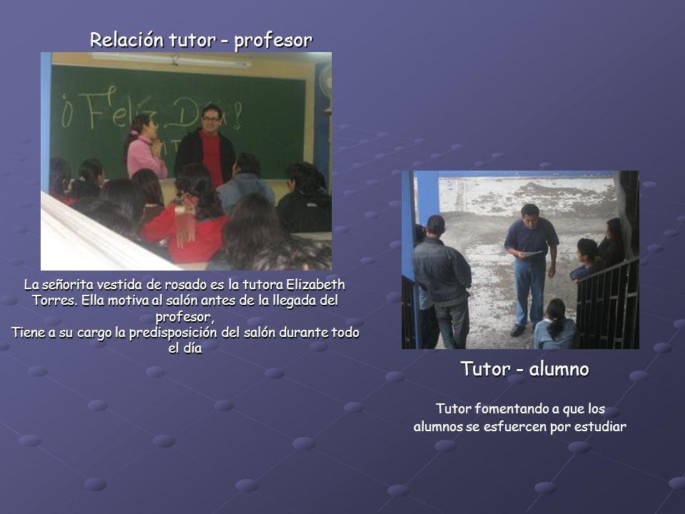 Relación tutor - profesor