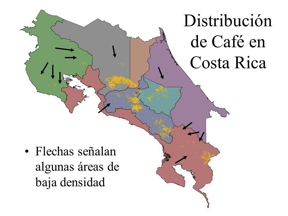 Distribución de Café en Costa Rica