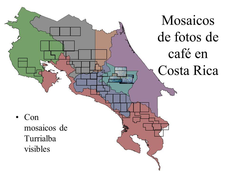 Mosaicos de fotos de café en Costa Rica