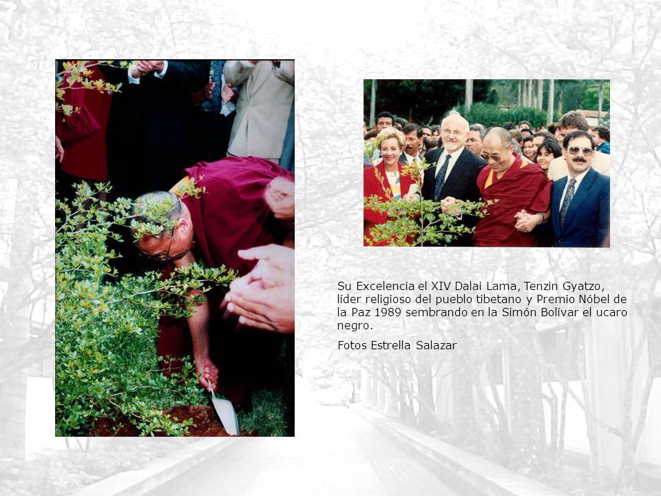 Su Excelencia el XIV Dalai Lama, Tenzin Gyatzo, líder religioso del pueblo tibetano y Premio Nóbel de la Paz 1989 sembrando en la Simón Bolívar el ucaro negro.