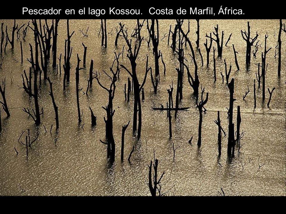 Pescador en el lago Kossou. Costa de Marfil, África.