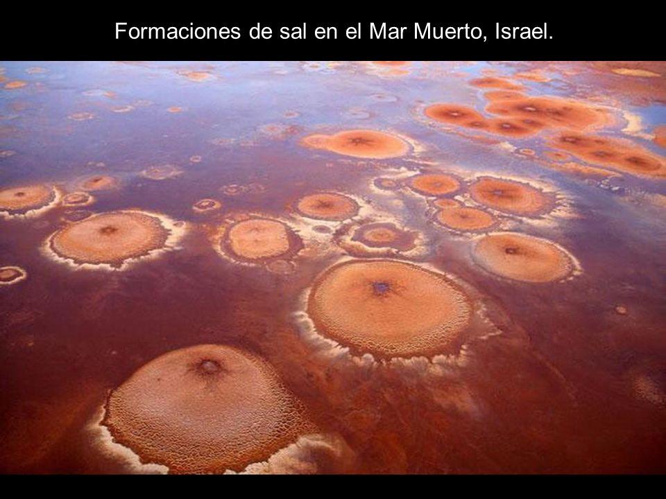 Formaciones de sal en el Mar Muerto, Israel.
