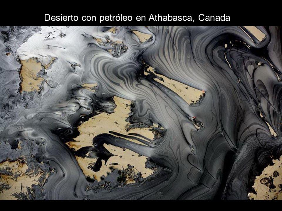 Desierto con petróleo en Athabasca, Canada