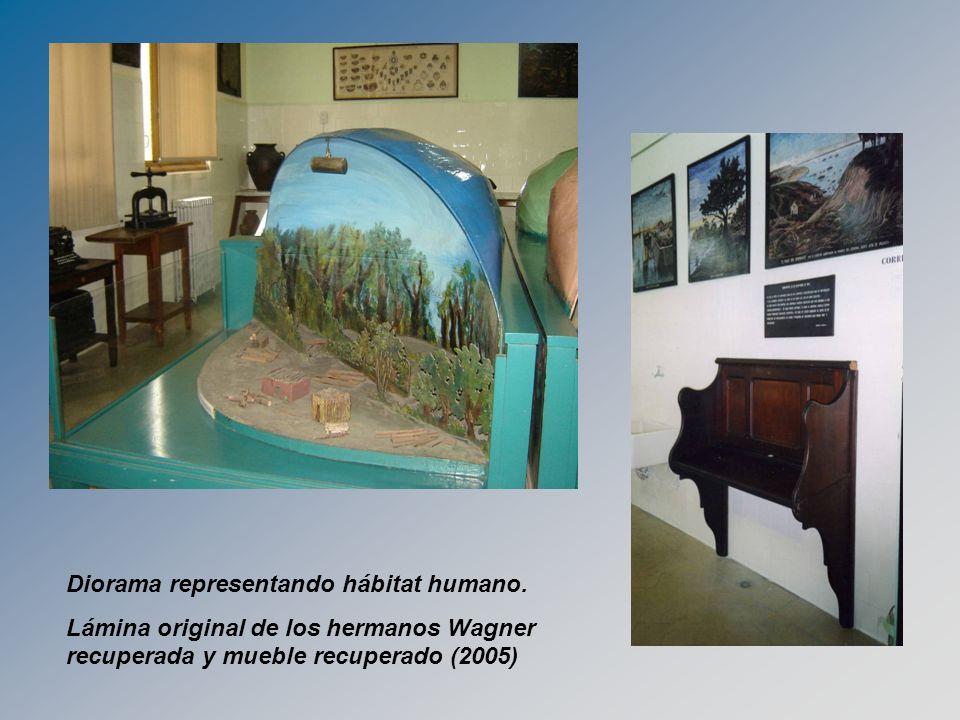 Diorama representando hábitat humano.