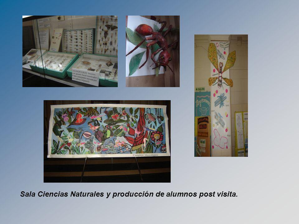 Sala Ciencias Naturales y producción de alumnos post visita.