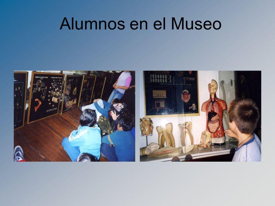 Alumnos en el Museo