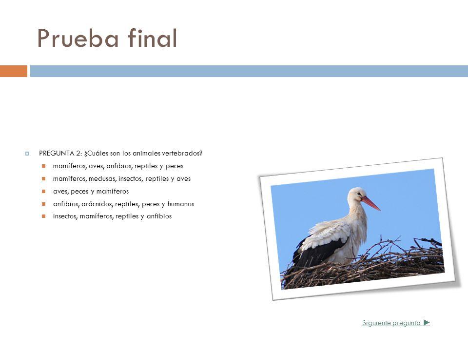 Prueba final PREGUNTA 2: ¿Cuáles son los animales vertebrados