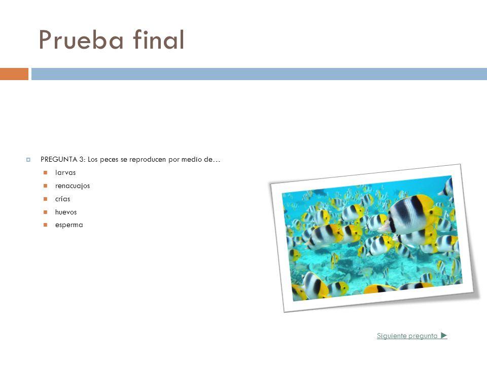Prueba final PREGUNTA 3: Los peces se reproducen por medio de… larvas