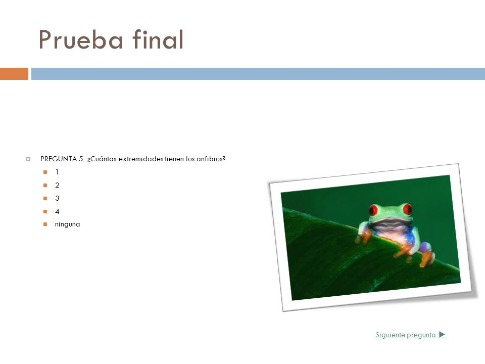 Prueba final PREGUNTA 5: ¿Cuántas extremidades tienen los anfibios 1