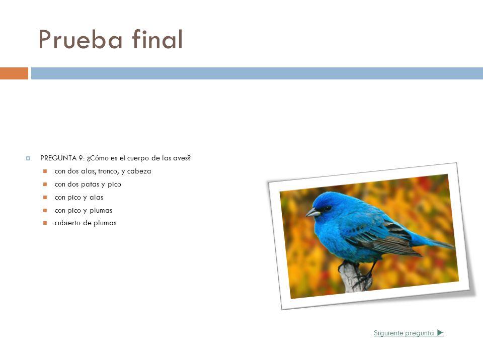 Prueba final PREGUNTA 9: ¿Cómo es el cuerpo de las aves