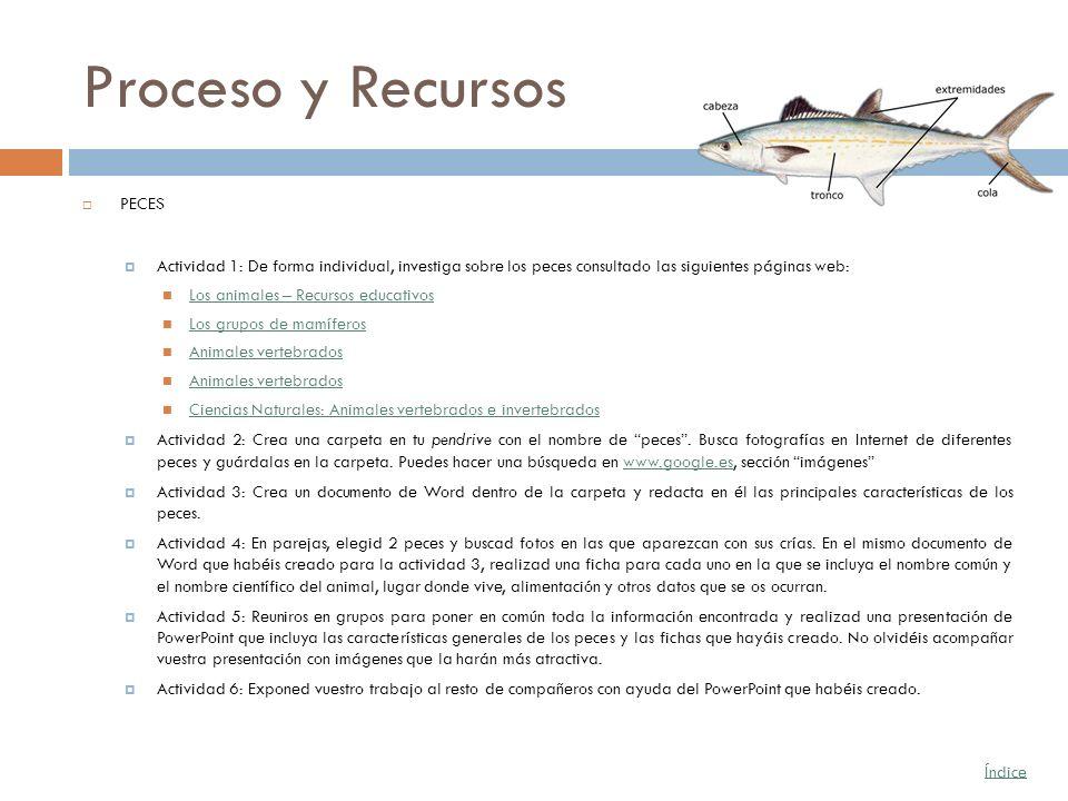 Proceso y Recursos PECES