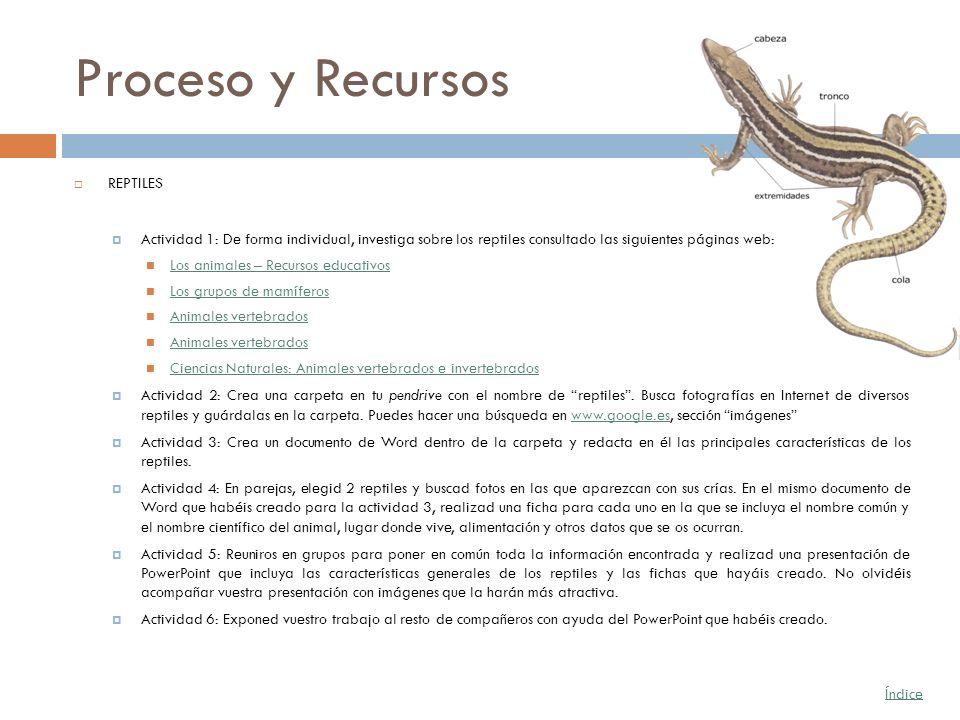 Proceso y Recursos REPTILES