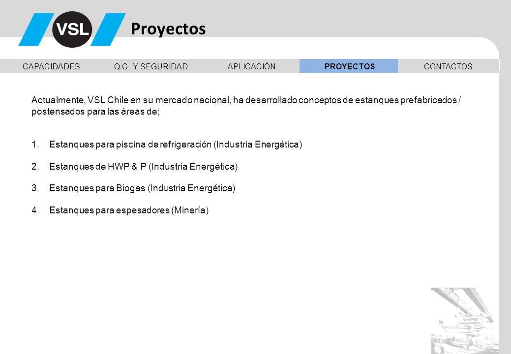 Proyectos CAPACIDADES. Q.C. Y SEGURIDAD. APLICACIÓN. PROYECTOS. CONTACTOS.