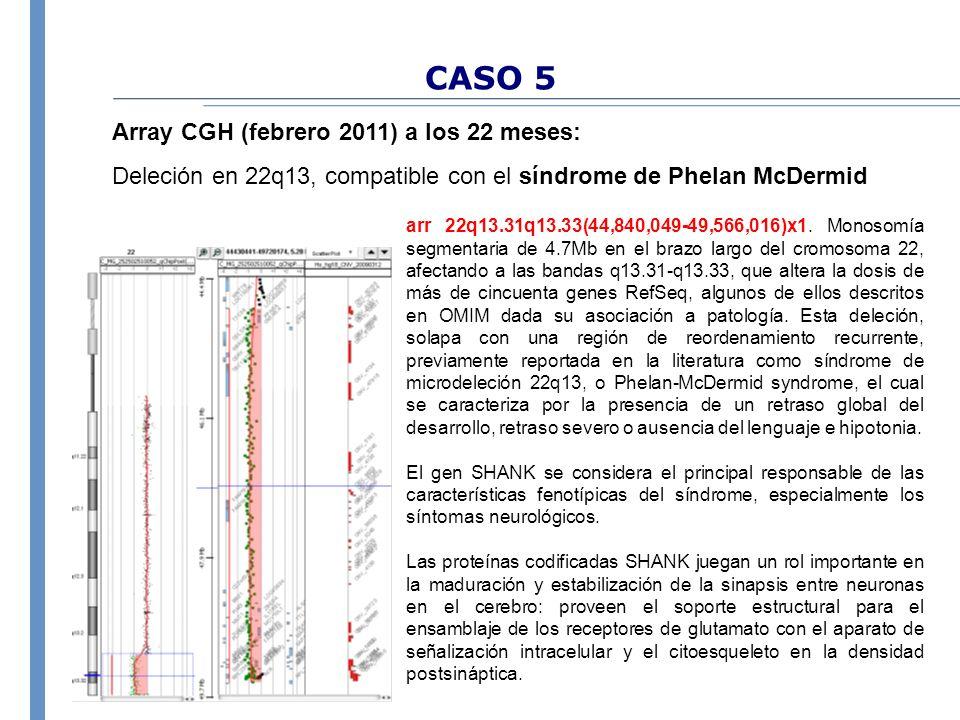 CASO 5 Array CGH (febrero 2011) a los 22 meses: