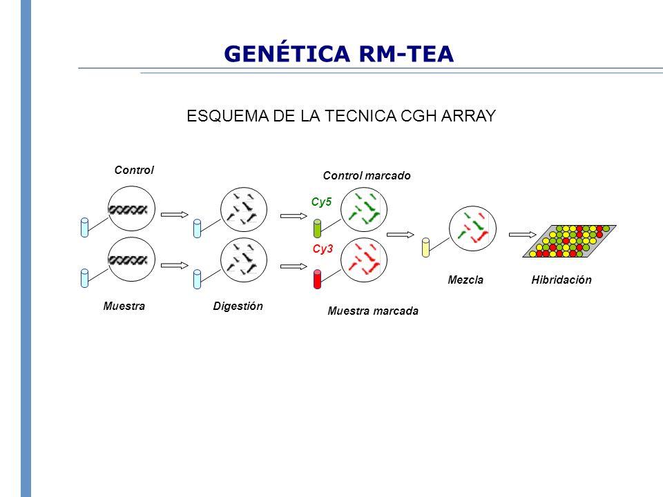 GENÉTICA RM-TEA ESQUEMA DE LA TECNICA CGH ARRAY Hibridación Mezcla