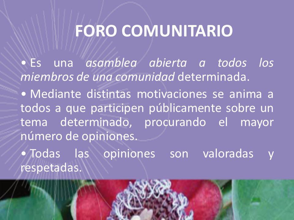 FORO COMUNITARIO Es una asamblea abierta a todos los miembros de una comunidad determinada.