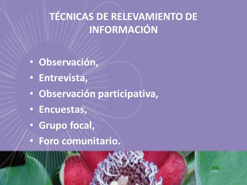 TÉCNICAS DE RELEVAMIENTO DE INFORMACIÓN