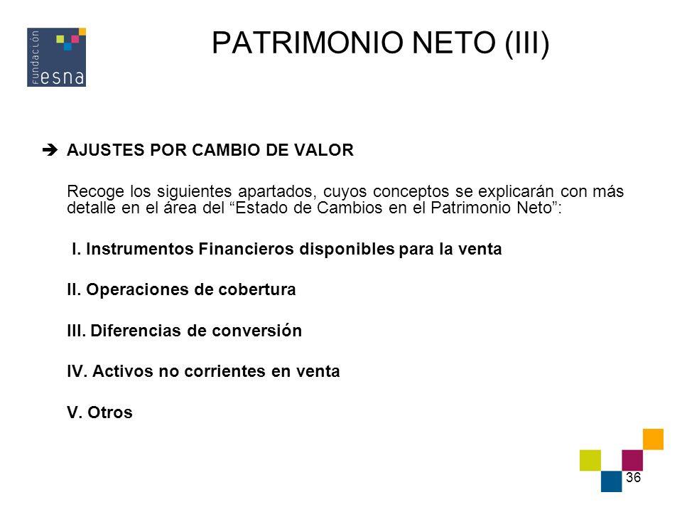 PATRIMONIO NETO (III) AJUSTES POR CAMBIO DE VALOR