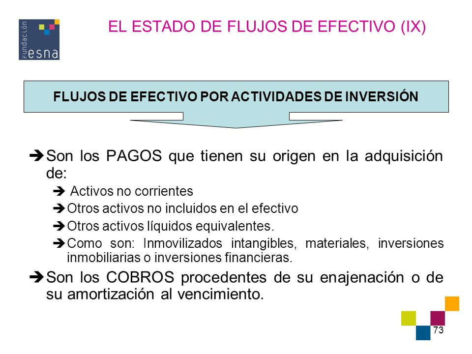 EL ESTADO DE FLUJOS DE EFECTIVO (IX)