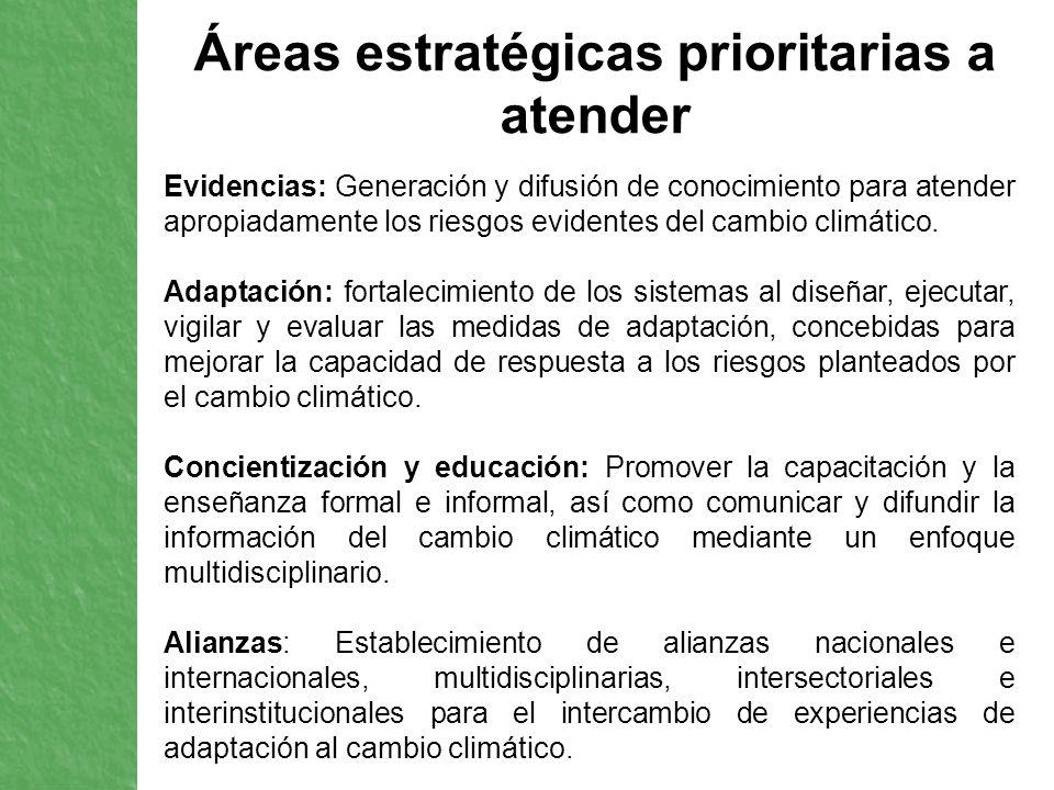 Áreas estratégicas prioritarias a atender