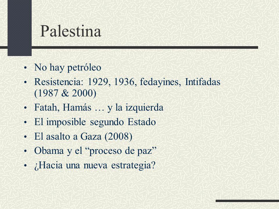 Palestina No hay petróleo