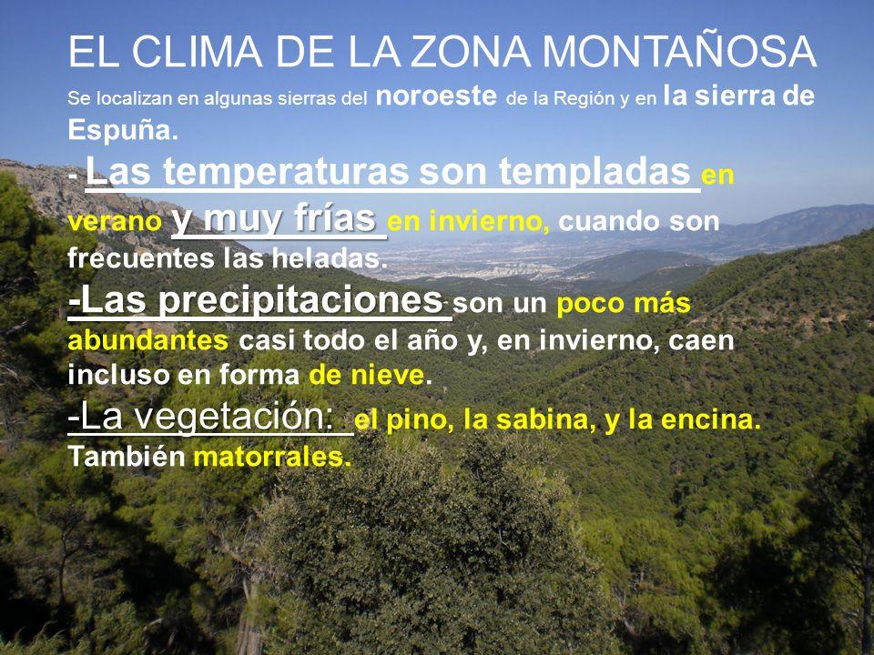 EL CLIMA DE LA ZONA MONTAÑOSA Se localizan en algunas sierras del noroeste de la Región y en la sierra de Espuña.