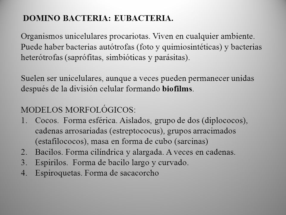 DOMINO BACTERIA: EUBACTERIA.
