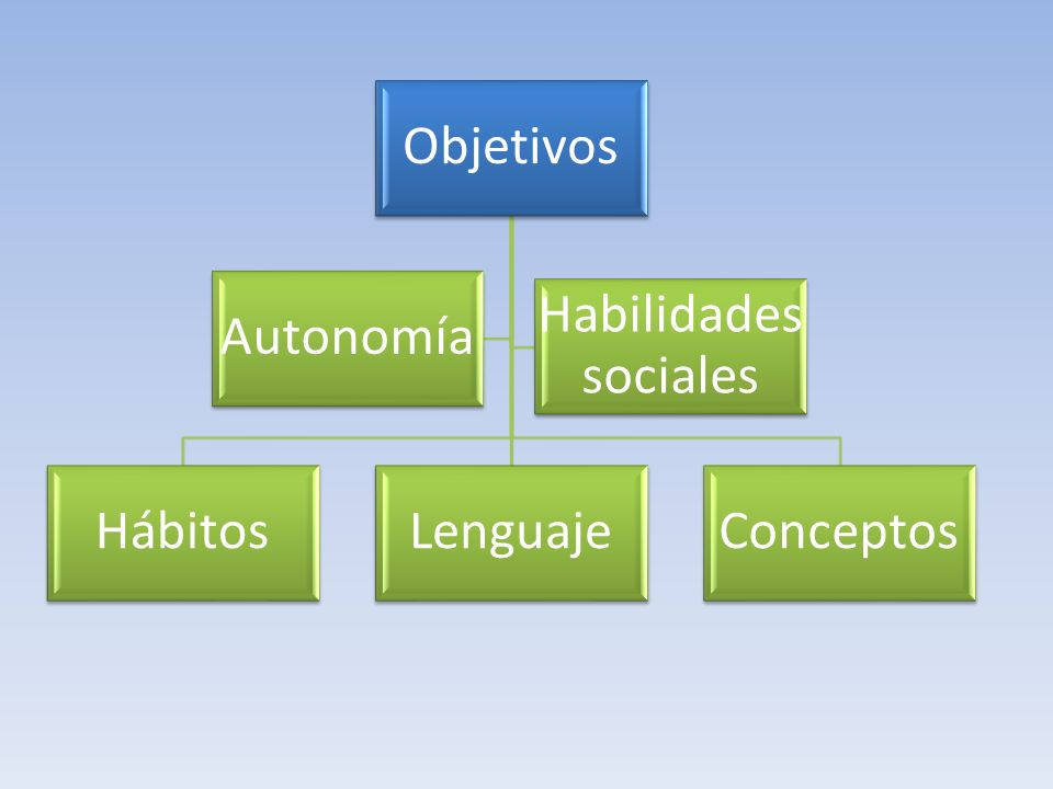 Objetivos Autonomía Hábitos Lenguaje Conceptos Habilidades sociales