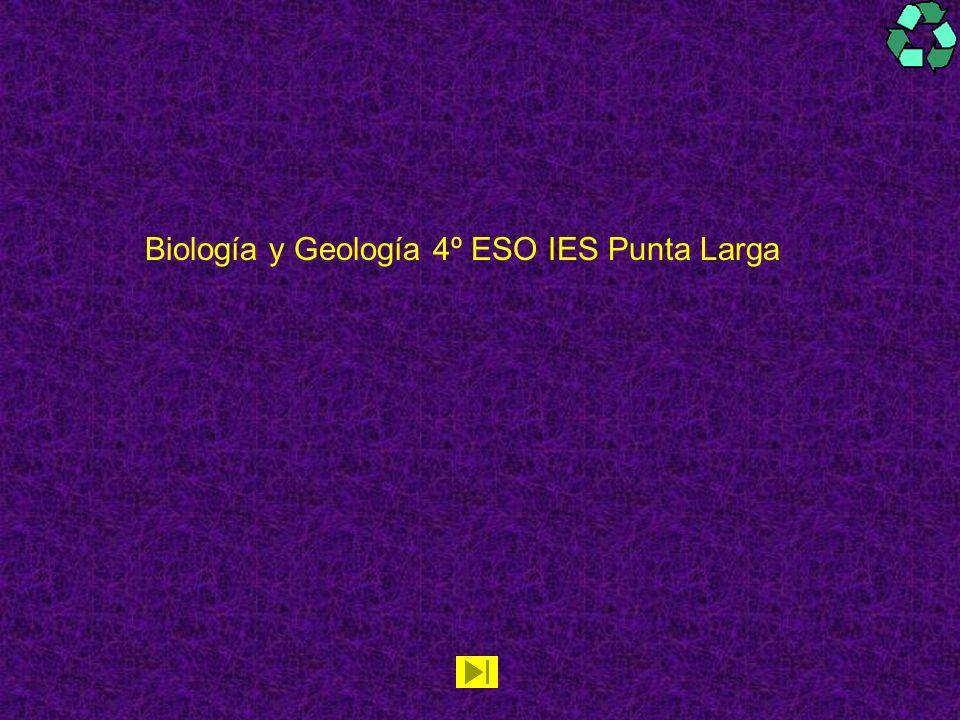 Biología y Geología 4º ESO IES Punta Larga