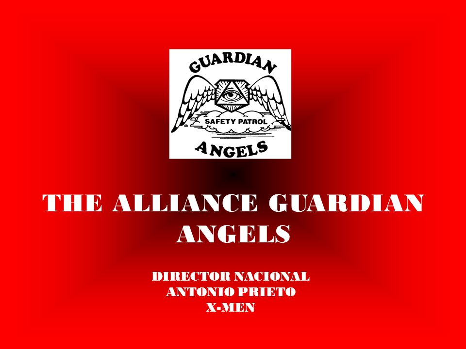 THE ALLIANCE GUARDIAN ANGELS