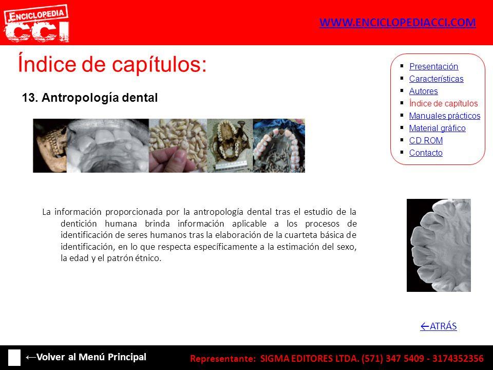Índice de capítulos: WWW.ENCICLOPEDIACCI.COM 13. Antropología dental