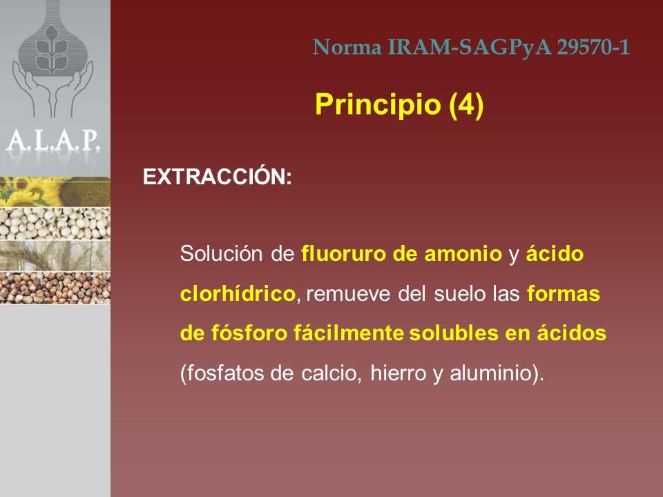 Principio (4) Norma IRAM-SAGPyA 29570-1 EXTRACCIÓN: