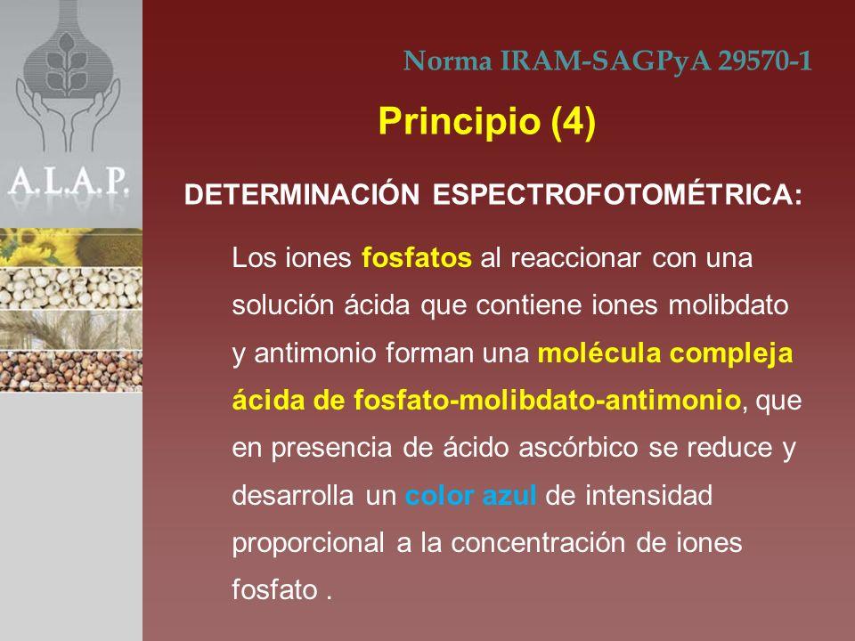 Principio (4) Norma IRAM-SAGPyA 29570-1