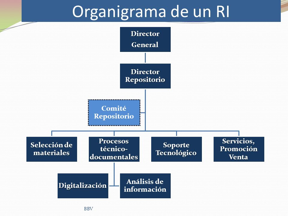 Organigrama de un RI Director General Director Repositorio