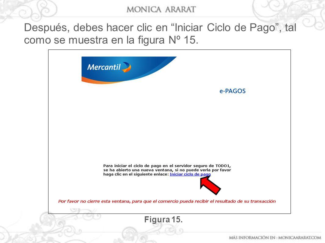 Después, debes hacer clic en Iniciar Ciclo de Pago , tal como se muestra en la figura Nº 15.