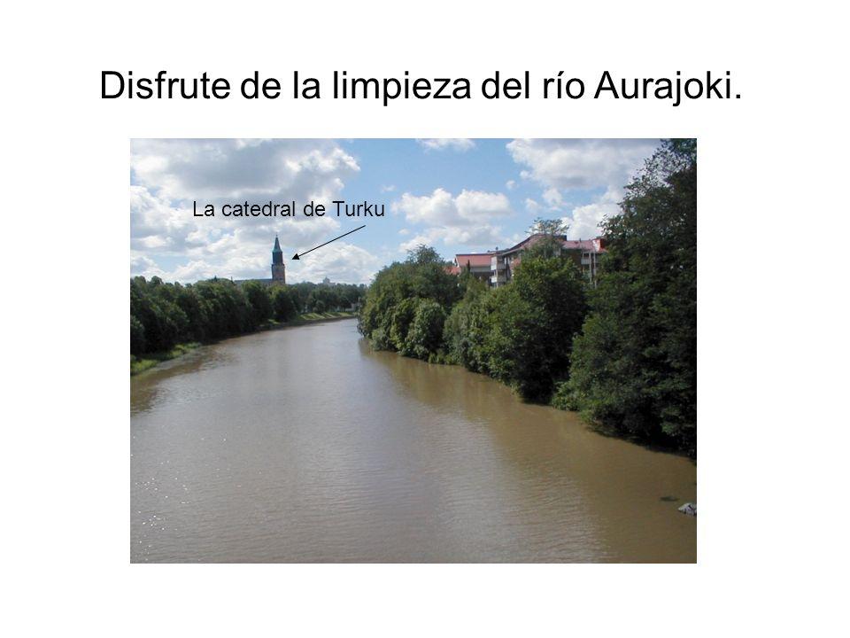 Disfrute de la limpieza del río Aurajoki.