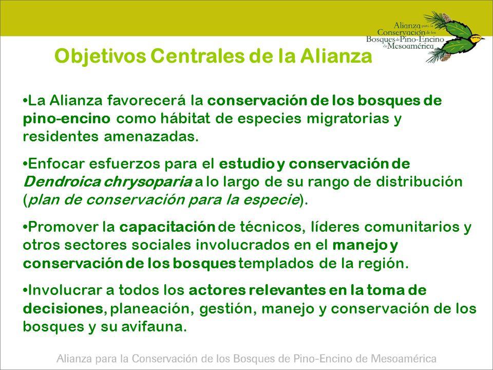 Objetivos Centrales de la Alianza