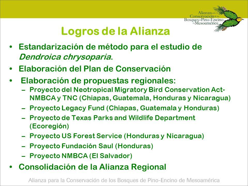 Logros de la Alianza Estandarización de método para el estudio de Dendroica chrysoparia. Elaboración del Plan de Conservación.