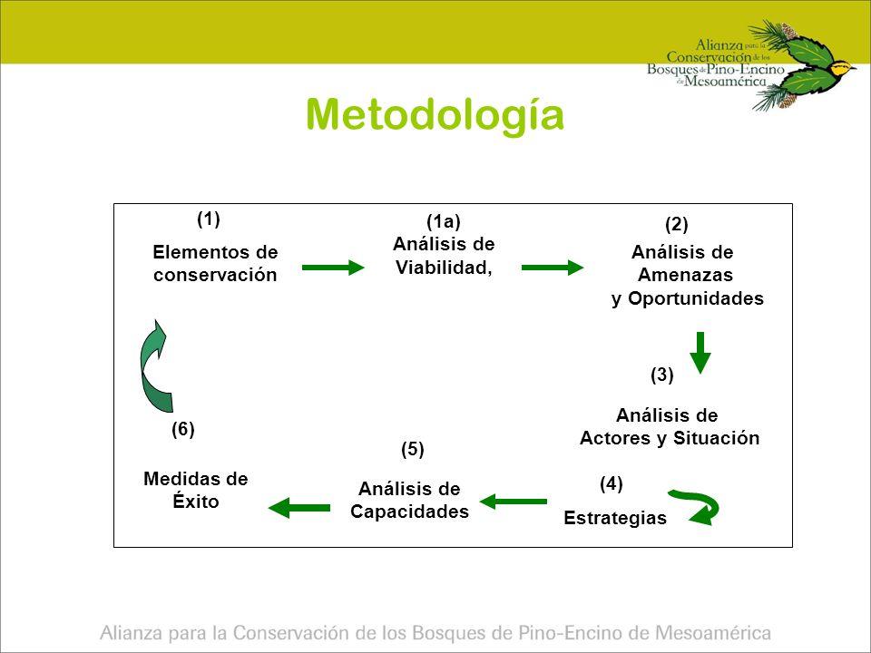 Metodología (1) (1a) (2) Análisis de Viabilidad,