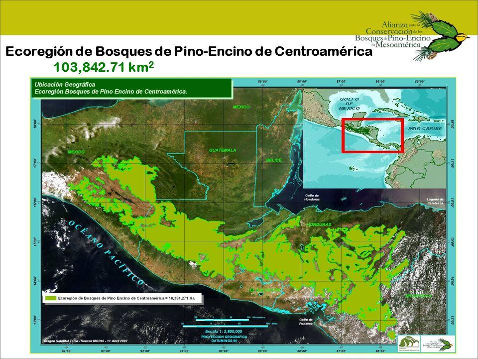 Ecoregión de Bosques de Pino-Encino de Centroamérica 103,842.71 km2