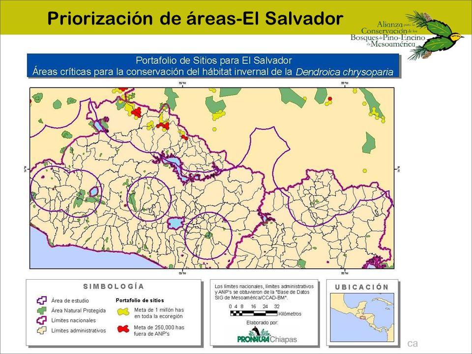 Priorización de áreas-El Salvador