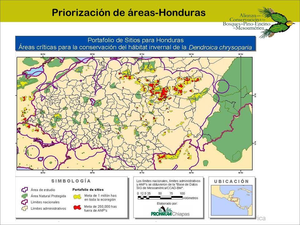 Priorización de áreas-Honduras