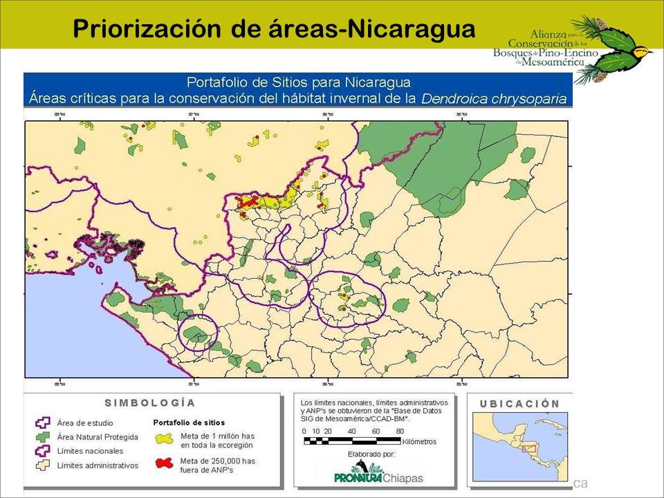Priorización de áreas-Nicaragua
