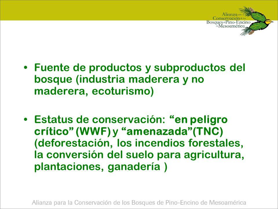 Fuente de productos y subproductos del bosque (industria maderera y no maderera, ecoturismo)
