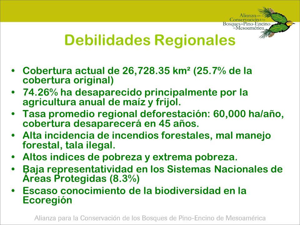 Debilidades Regionales
