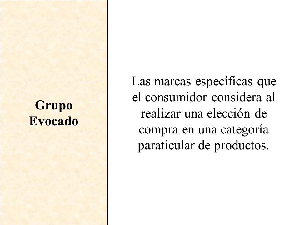 Grupo Evocado.