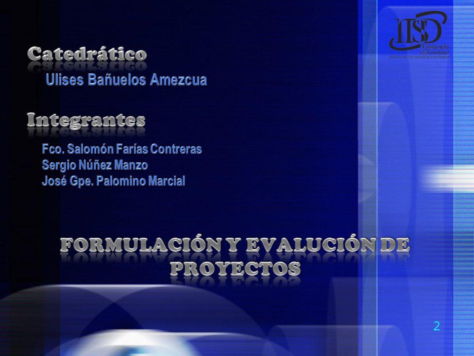 FORMULACIÓN Y EVALUCIÓN DE PROYECTOS