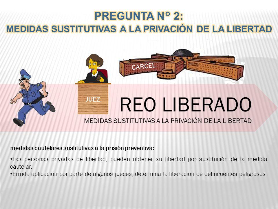 MEDIDAS SUSTITUTIVAS A LA PRIVACIÓN DE LA LIBERTAD