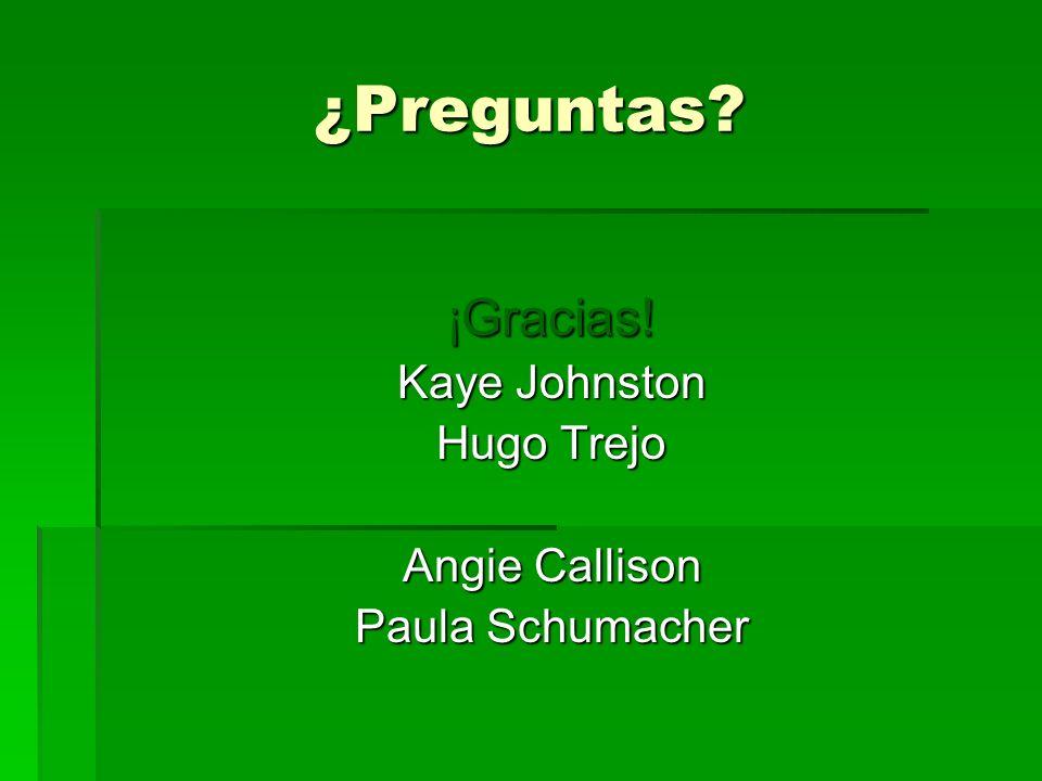 ¿Preguntas ¡Gracias! Kaye Johnston Hugo Trejo Angie Callison